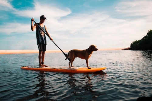 Best Inflatable Stand-Up Paddle Board